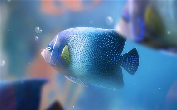 Fond d'écran Poissons d'aquarium bleu
