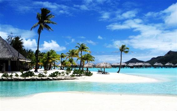 Обои Bora Bora Beach Resort Палм море