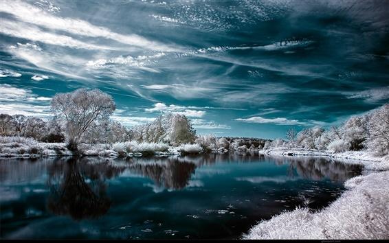 Обои Озеро и деревья зимой