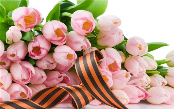 배경 화면 핑크 튤립 꽃과 리본