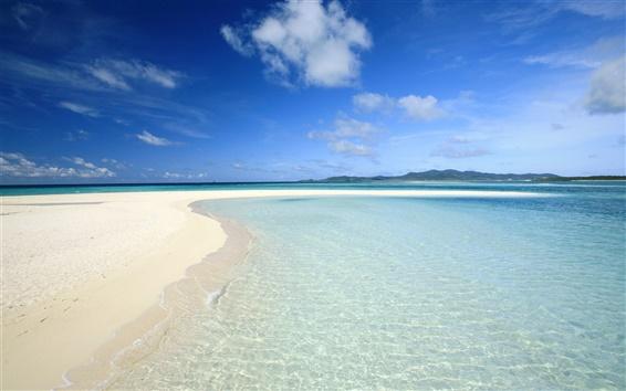 壁紙 海とビーチ