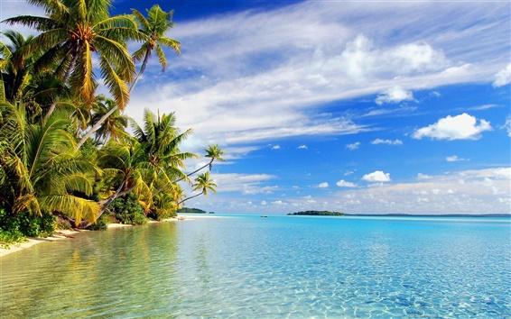 Wallpaper Tropical beach