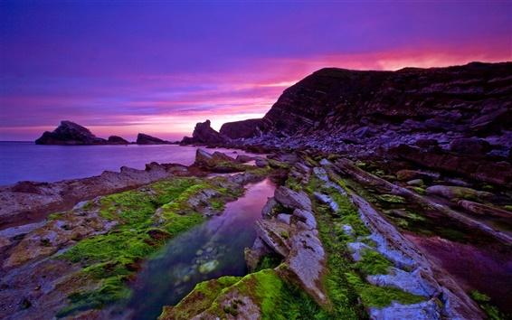 배경 화면 아름다운 보라색 석양 해안