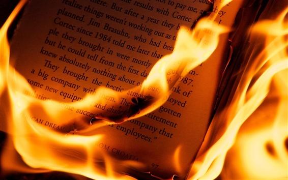 Fond d'écran Le brûlage des livres