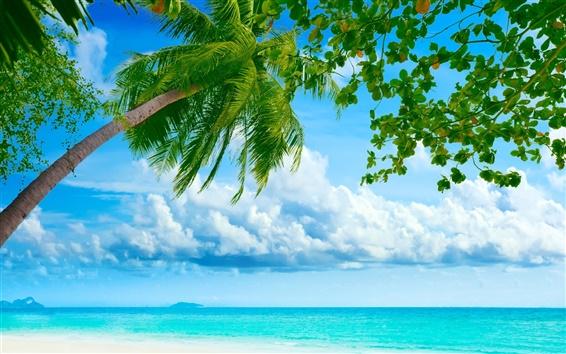 Обои Океан ладони рай