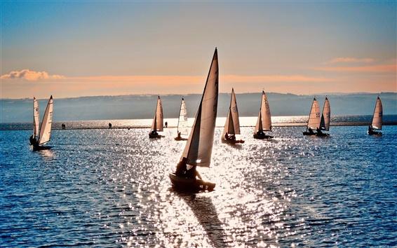 壁紙 海の水のヨットの夏