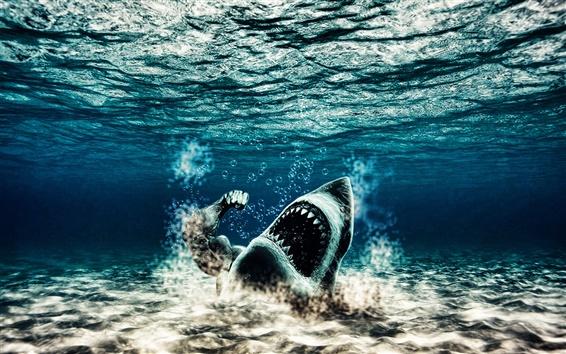 Papéis de Parede Tubarão da água estranha