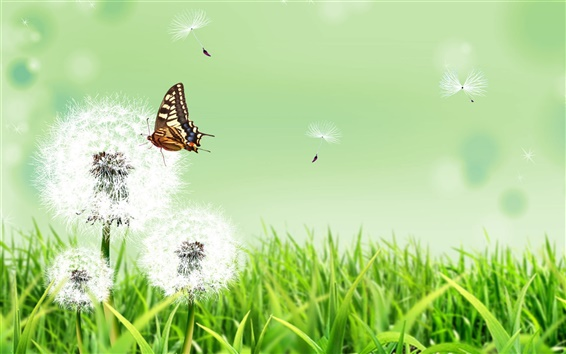 Wallpaper Summer herb dandelion flower and butterfly