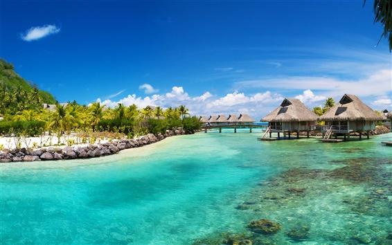 壁紙 熱帯の海、海、ヤシの家