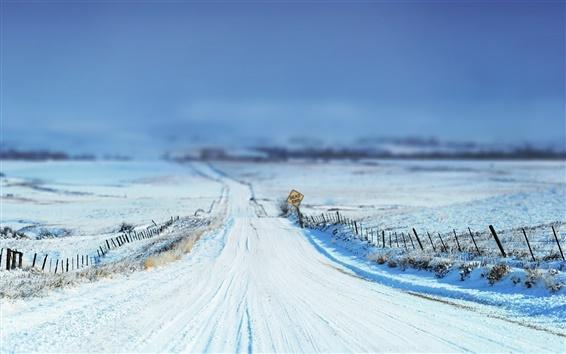 Fond d'écran chemin d'hiver