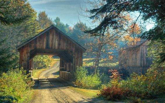 Wallpaper Bridge on forest road