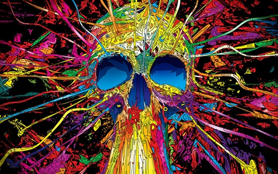 Wallpaper Colorful skull lines vector creative