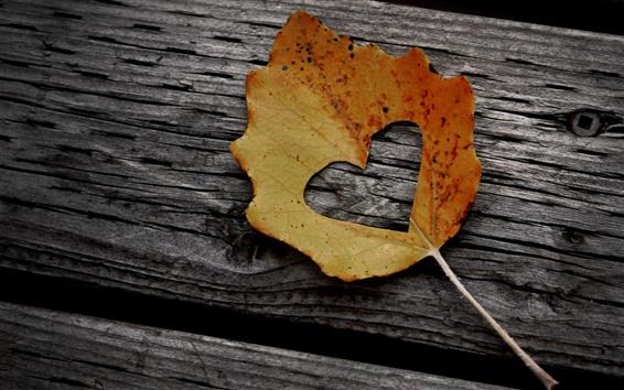 Wallpaper Heart maple leaf