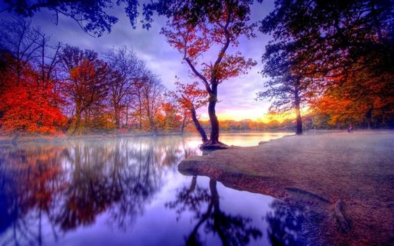 배경 화면 자연 가을의 침묵