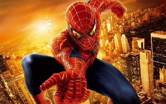 Обои Человек-паук в городе