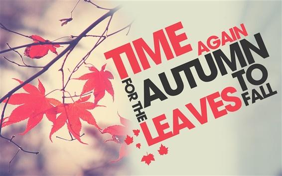 배경 화면 시간 다시 가을이 떠난다