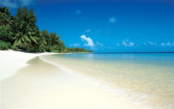 壁紙 熱帯の海とビーチ