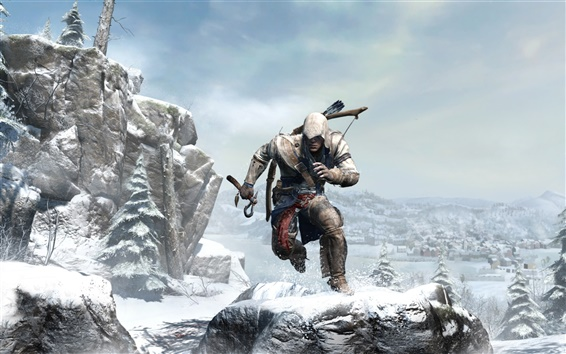 Wallpaper Assassin's Creed 3 wide