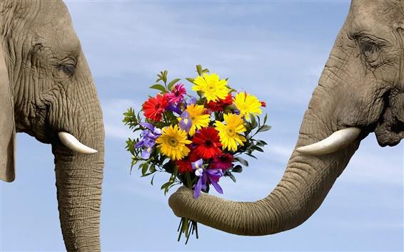 Wallpaper Elephants also romantic