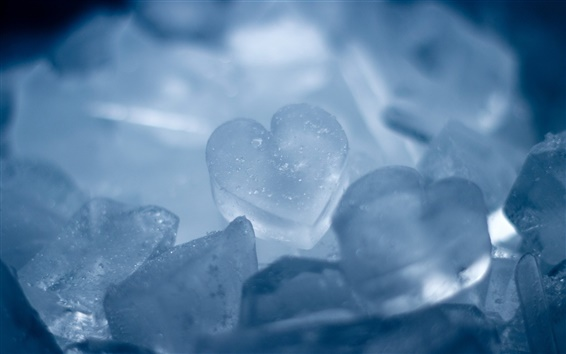 Papéis de Parede coração de gelo