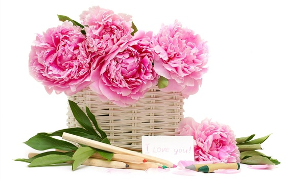 Wallpaper Peonies flower basket pencil crayons