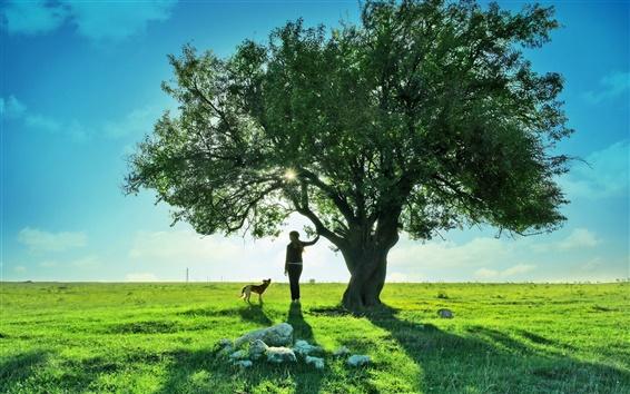 Обои Подросток девочка собака дерево красивый пейзаж