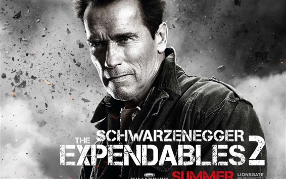 Wallpaper Arnold Schwarzenegger in The Expendables 2 movie HD