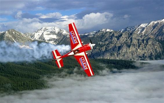 Wallpaper High-flying glider