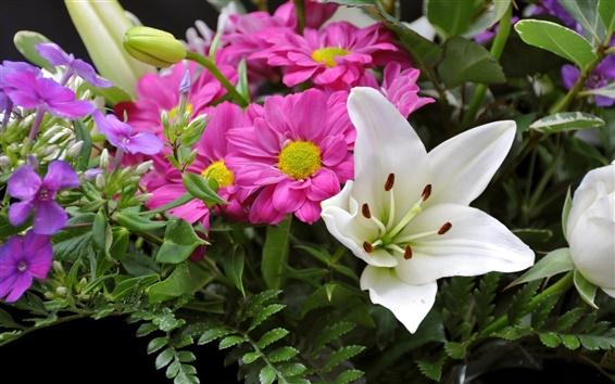 배경 화면 클로즈업 아름다운 꽃