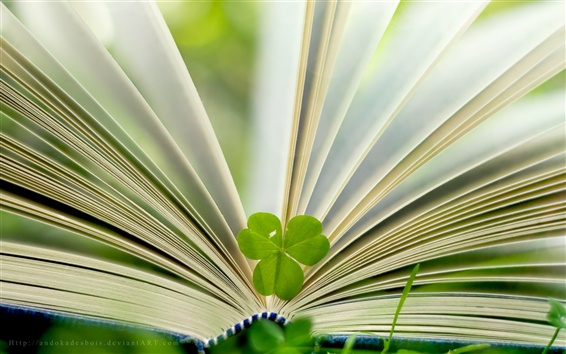 Wallpaper Book and green leaf