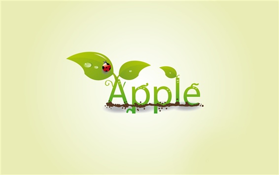 Wallpaper Creative apple leaf ladybug drops