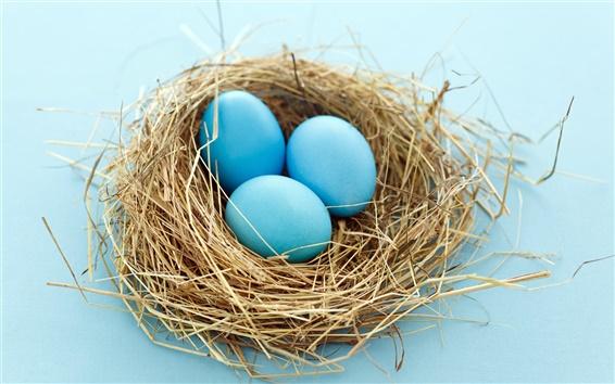 Fond d'écran Oeufs de Pâques dans le nid
