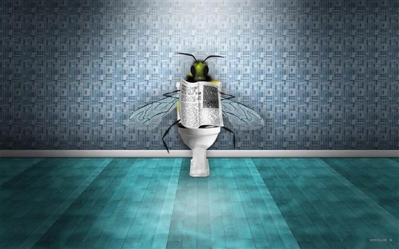 Fond d'écran Des mouches dans les toilettes en lisant le journal