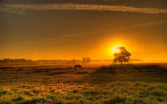 Fondos de pantalla Un paisaje alemán, por la mañana