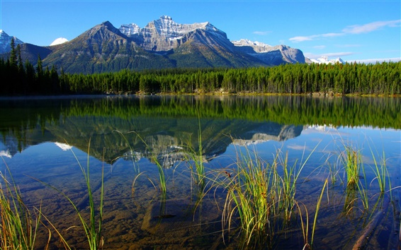 Wallpaper National Parks in Banff Canada