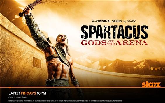 Wallpaper Spartacus: Gods of the Arena