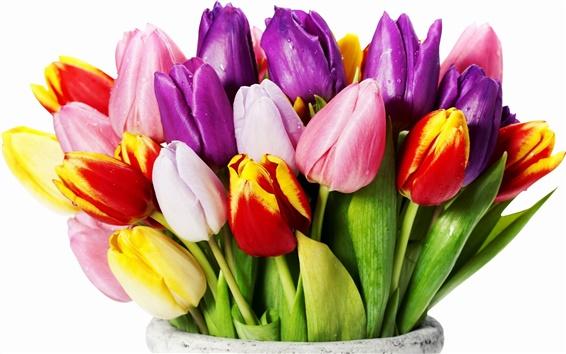 Papéis de Parede Tulip bouquet em um vaso