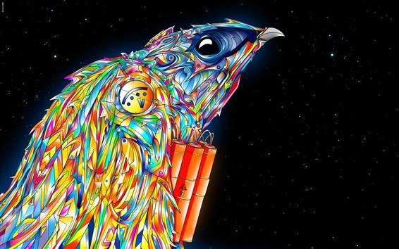 Обои Векторный красочный птицы