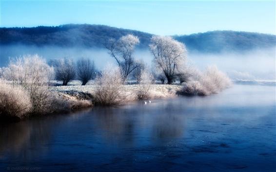 Обои Зимняя берегу озера утренний туман