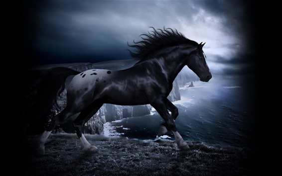 Обои Лошади в темноте