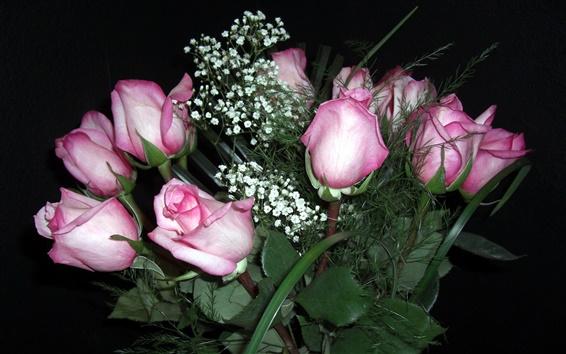 壁纸 夜的玫瑰花
