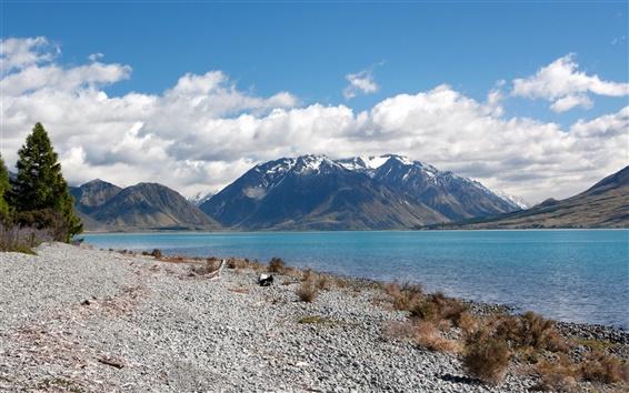 Wallpaper Rivers of New Zealand
