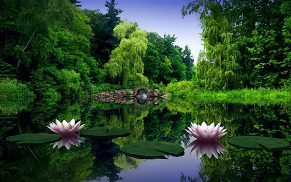 Fondos de pantalla Flores lirios de agua en el lago
