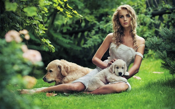 Wallpaper Beautiful girl with a dog in the grass