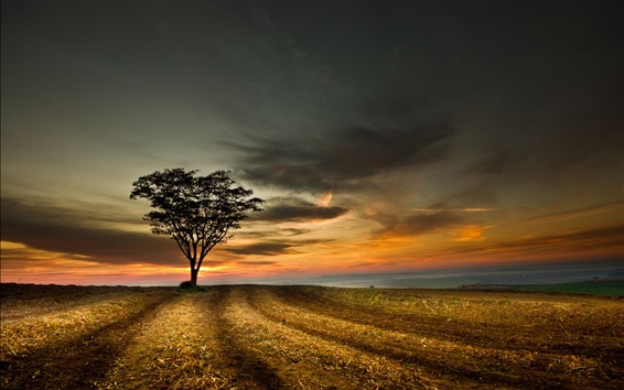 Wallpaper Beautiful twilight landscape