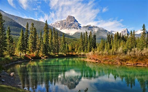 Papéis de Parede Paisagem natural da floresta canadense lago