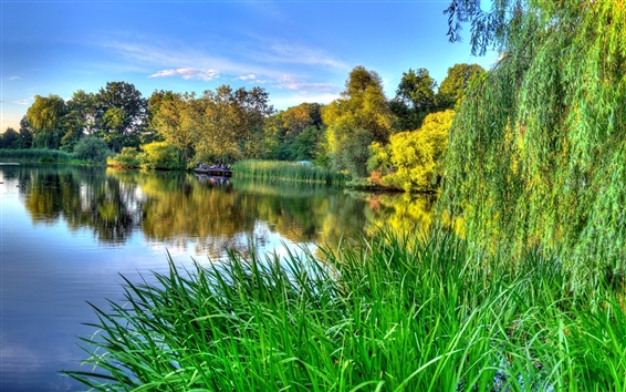 Wallpaper The green of nature, spring, river beauty