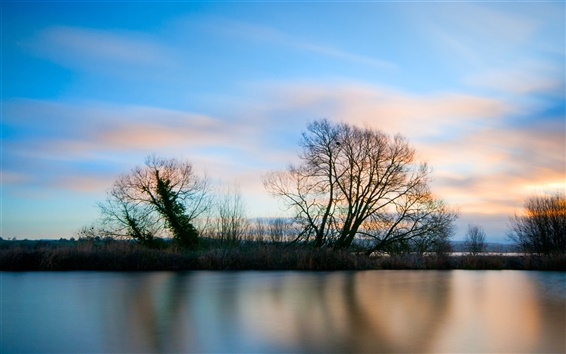 Wallpaper Beautiful lake surface and trees landscape at evening