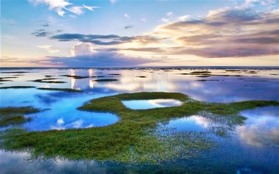 Fond d'écran Beau paysage lagunaire eau du lac herbe et les nuages