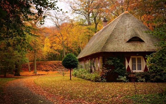 Fondos de pantalla Casa en el parque de otoño